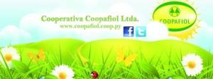 coopafiol (3)
