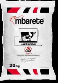 lactacion_mbarete