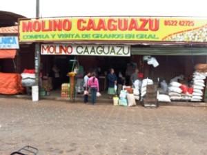 molino_caaguazu (2)