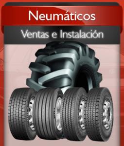 neumaticos