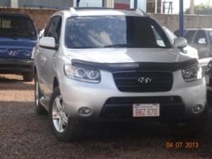 new_car_starita (17)