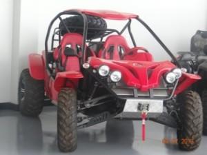 new_car_starita (39)