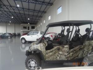 new_car_starita (45)