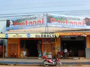 pantanal(5)