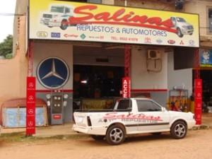salinas (2)