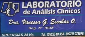 vanessa_escobar_analisis