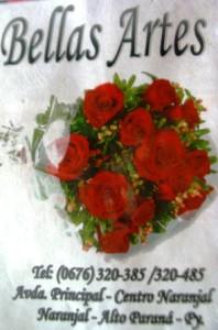 DSC01175 - Copy