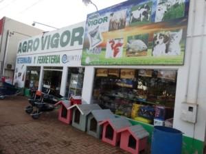 agro_vigor (23)